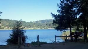 Wente Lake