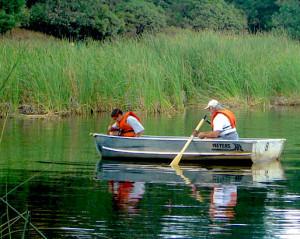 dente-boat